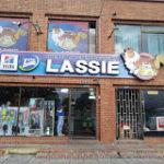 Centro Medico Veterinario Lassie
