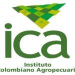 ICA | Mascotas